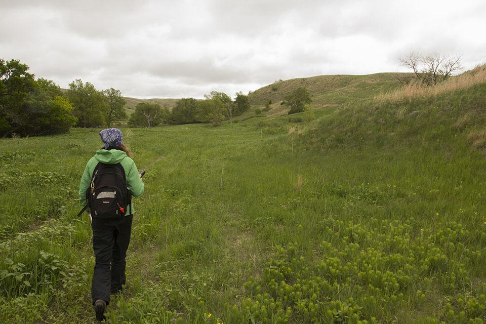Nora Greiman leads the team to the first excavation on the Kelso site.