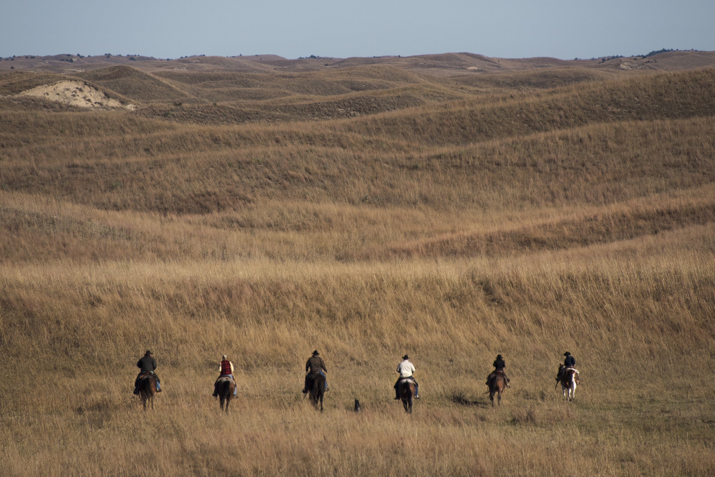 The Switzer family rides their horses through the Sandhills toward the herd of cattle. (Mariah Lundgren)