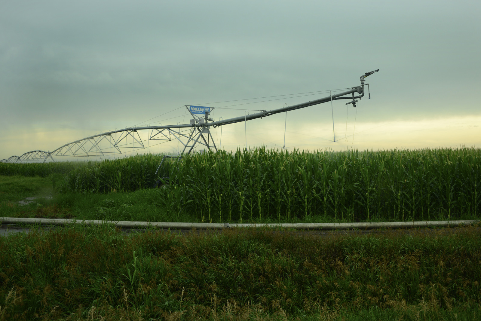 A center pivot irrigation system in central Nebraska. (Mariah Lundgren)
