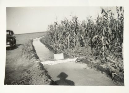 A canal system pulling water from Platte River basin's Prairie Creek irrigates my great grandpa's corn fields in 1946.