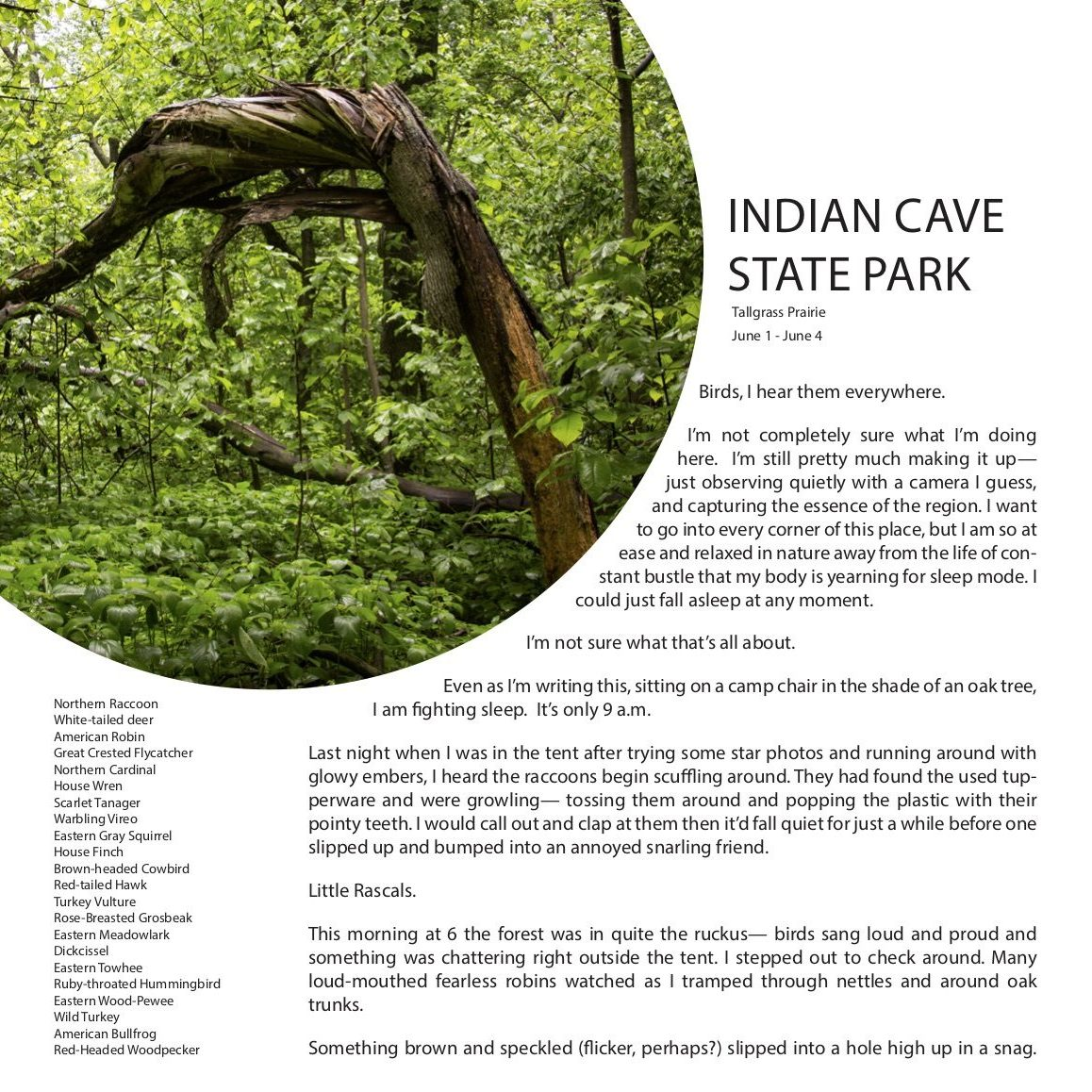 Indian Cave